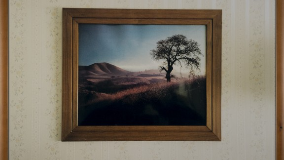 Landscape with Tree, 2003 Chromogenic print, glass, wooden frame, 53 x 73 cm